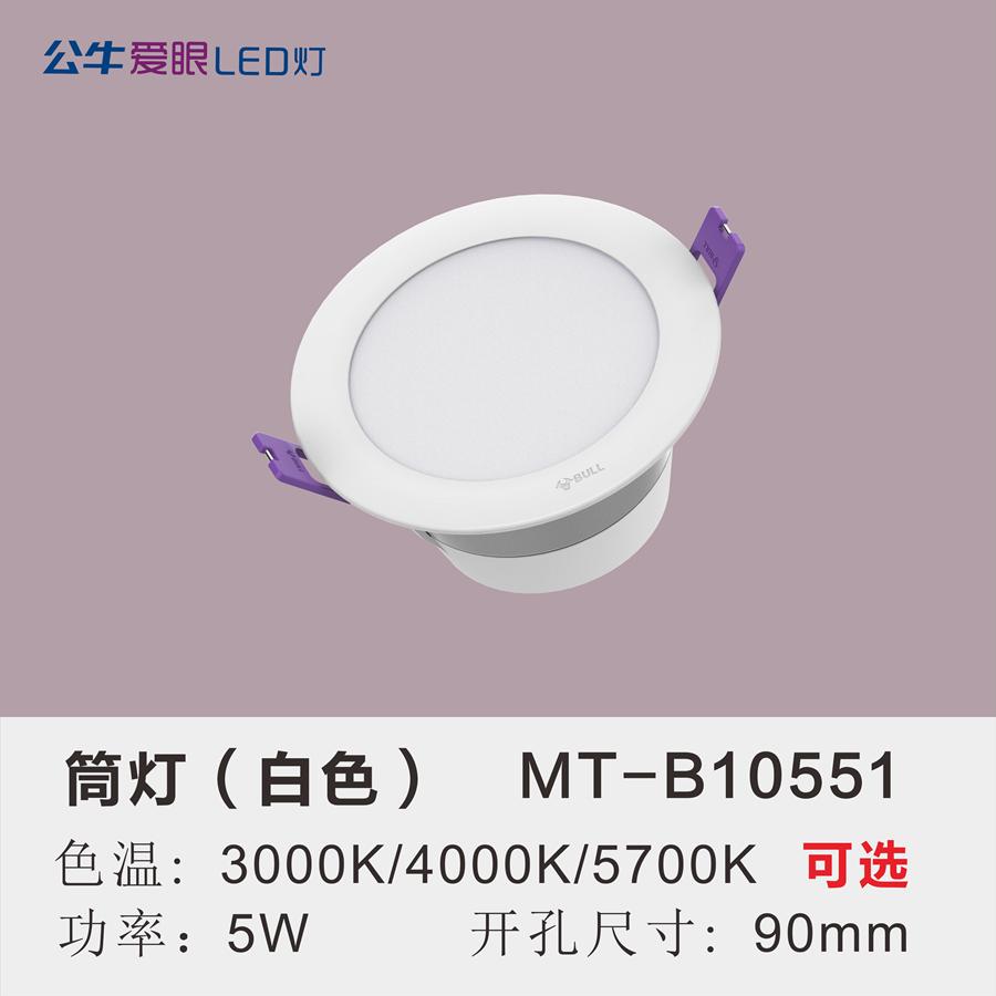 LED筒灯5W【白色面环】