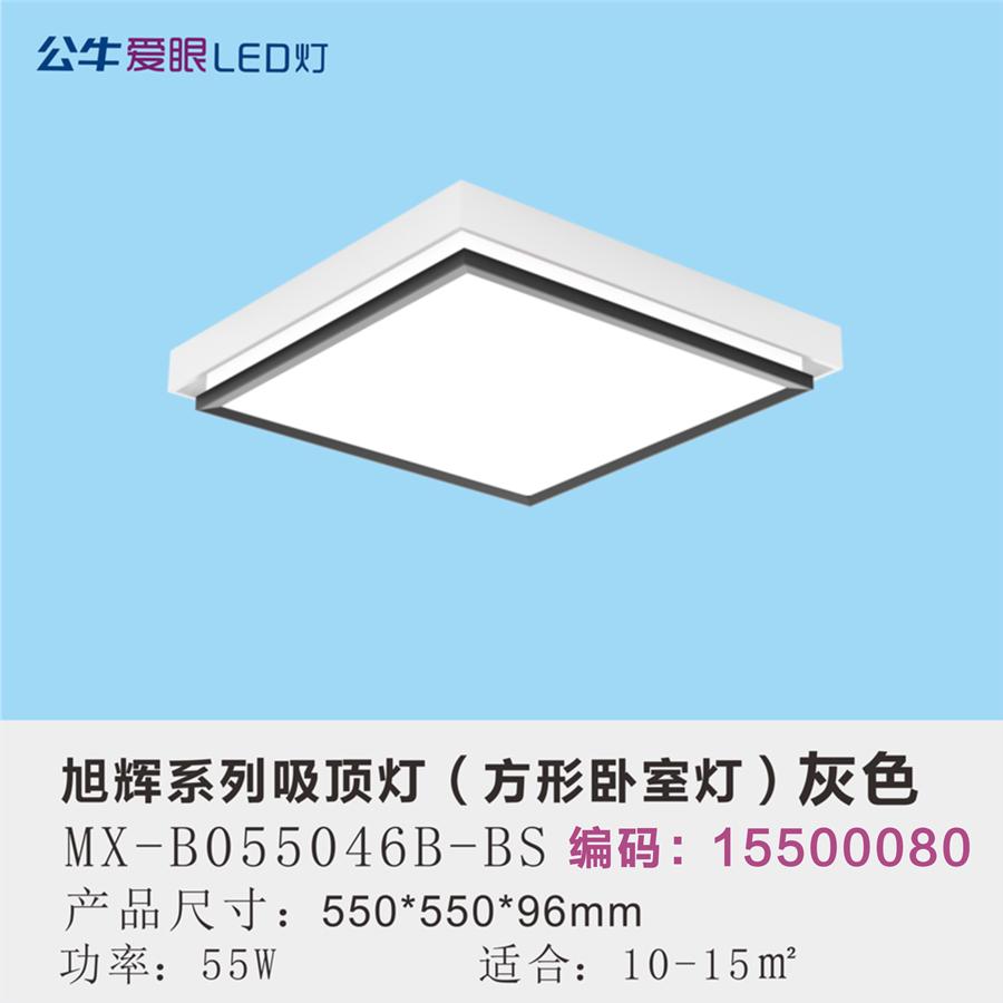 旭辉LED现代简约卧室灯55W三色变光/灰色