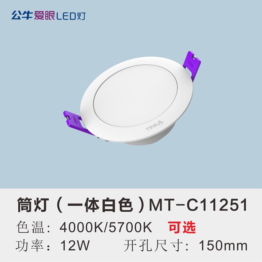 LED筒灯12W【一体白色面环】
