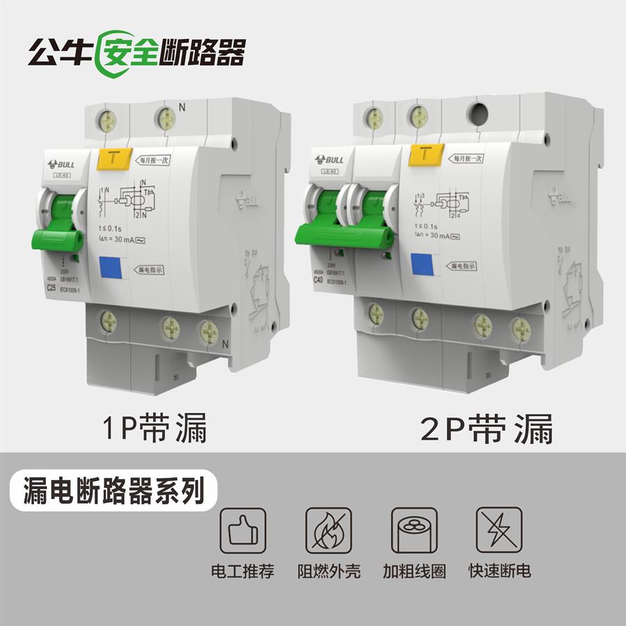 家用单P双P漏电保护器